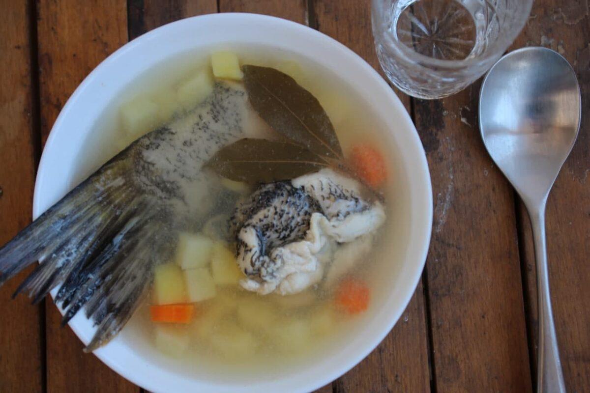 Уха из щуки — Русская кухня